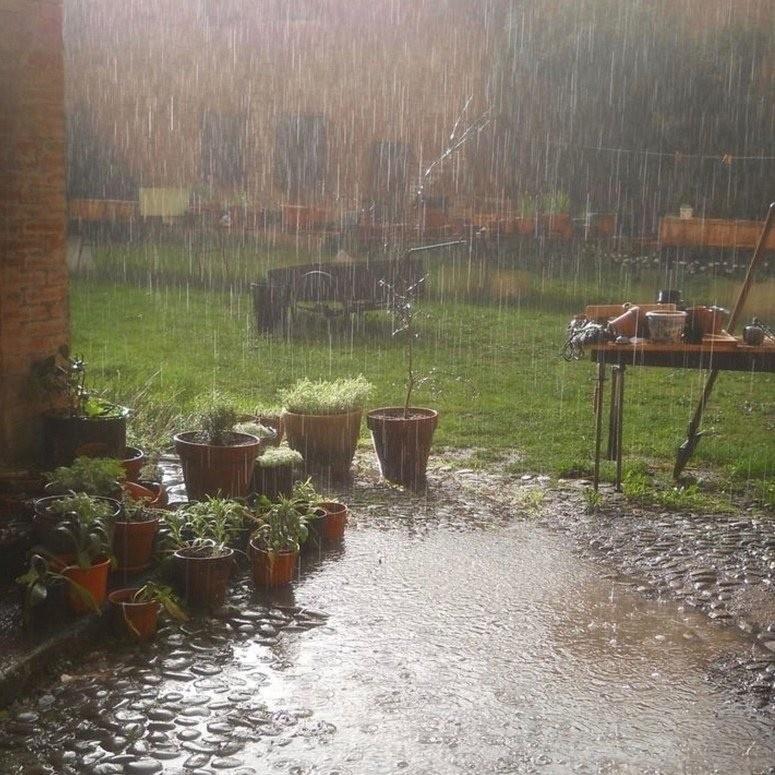 Не хочу быть банальным, но звук дождевых капель, бьющихся ночью об крышу — лучшая вещь на свете.