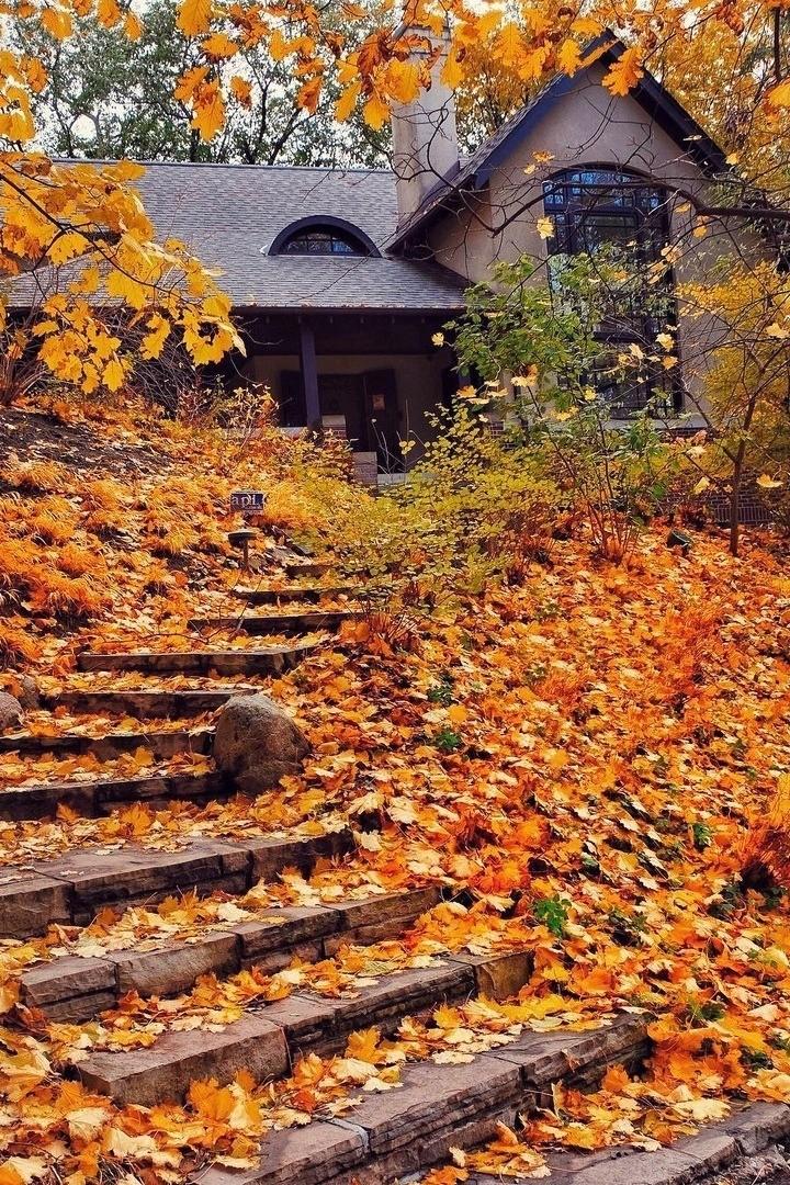 А я люблю осень. Люблю эти пасмурные дни с серым небом и моросящим дождем.