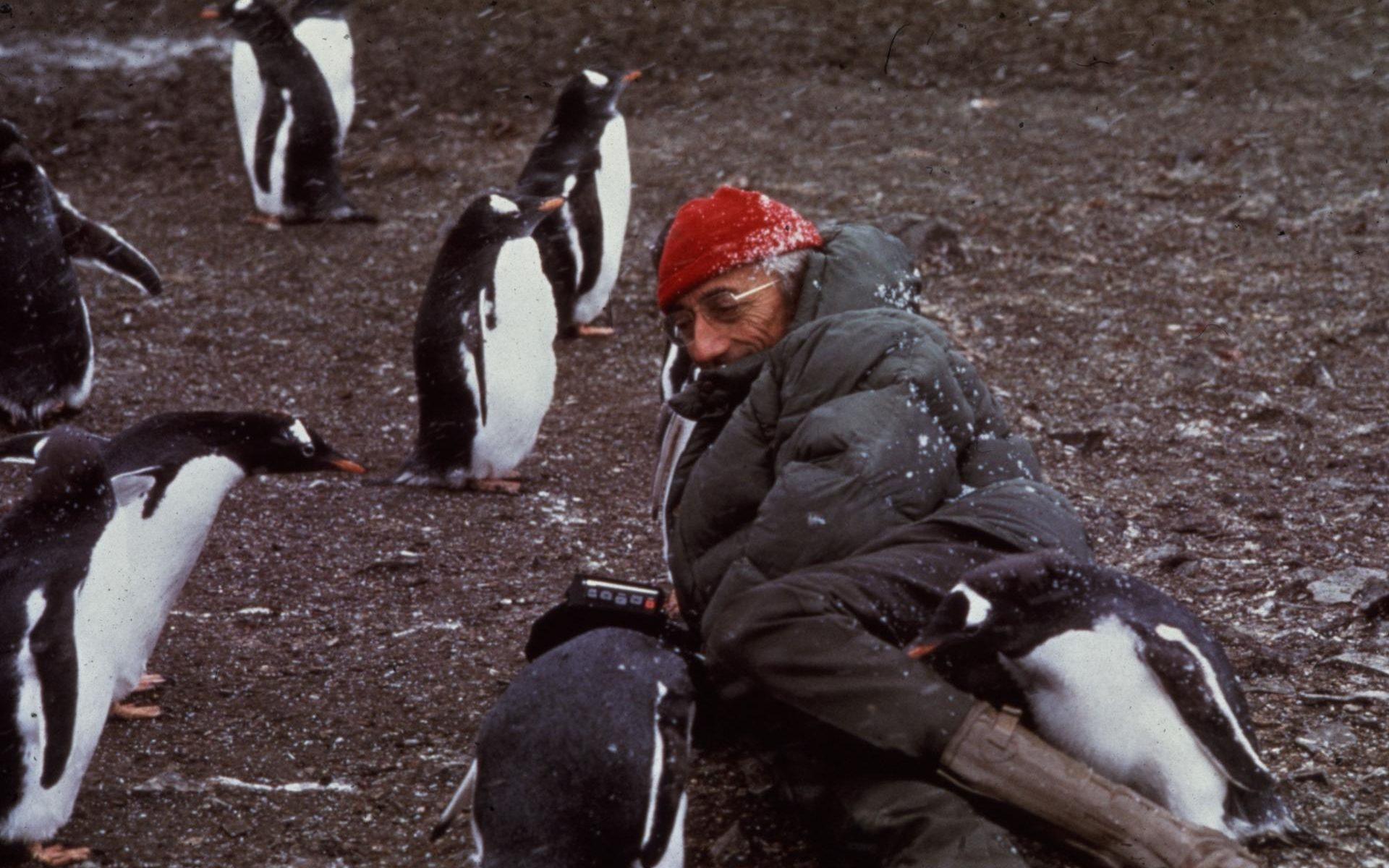 Малоизвестная экспедиция Жака Ив Кусто в Антарктиду