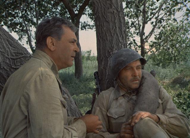 История из романа М.А. Шолохова «Они сражались за Родину» (1942-1969).