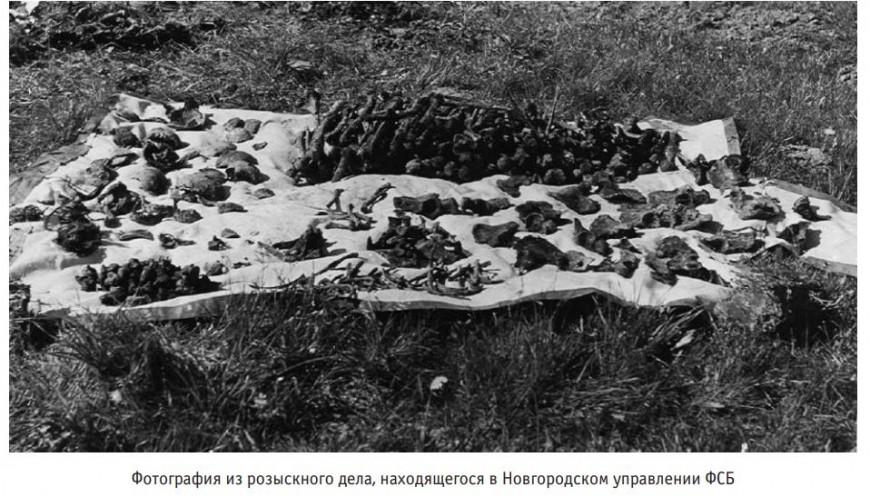 Историки обнародовали доказательства преступлений прибалтов в годы Второй мировой войны...