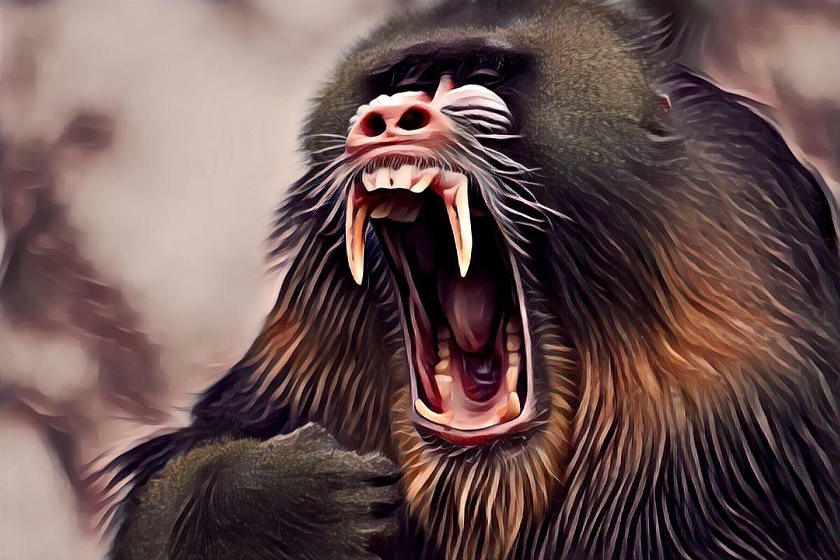 """""""Лесной дьявол"""" рассказ. Автор Николай Гумилёв"""