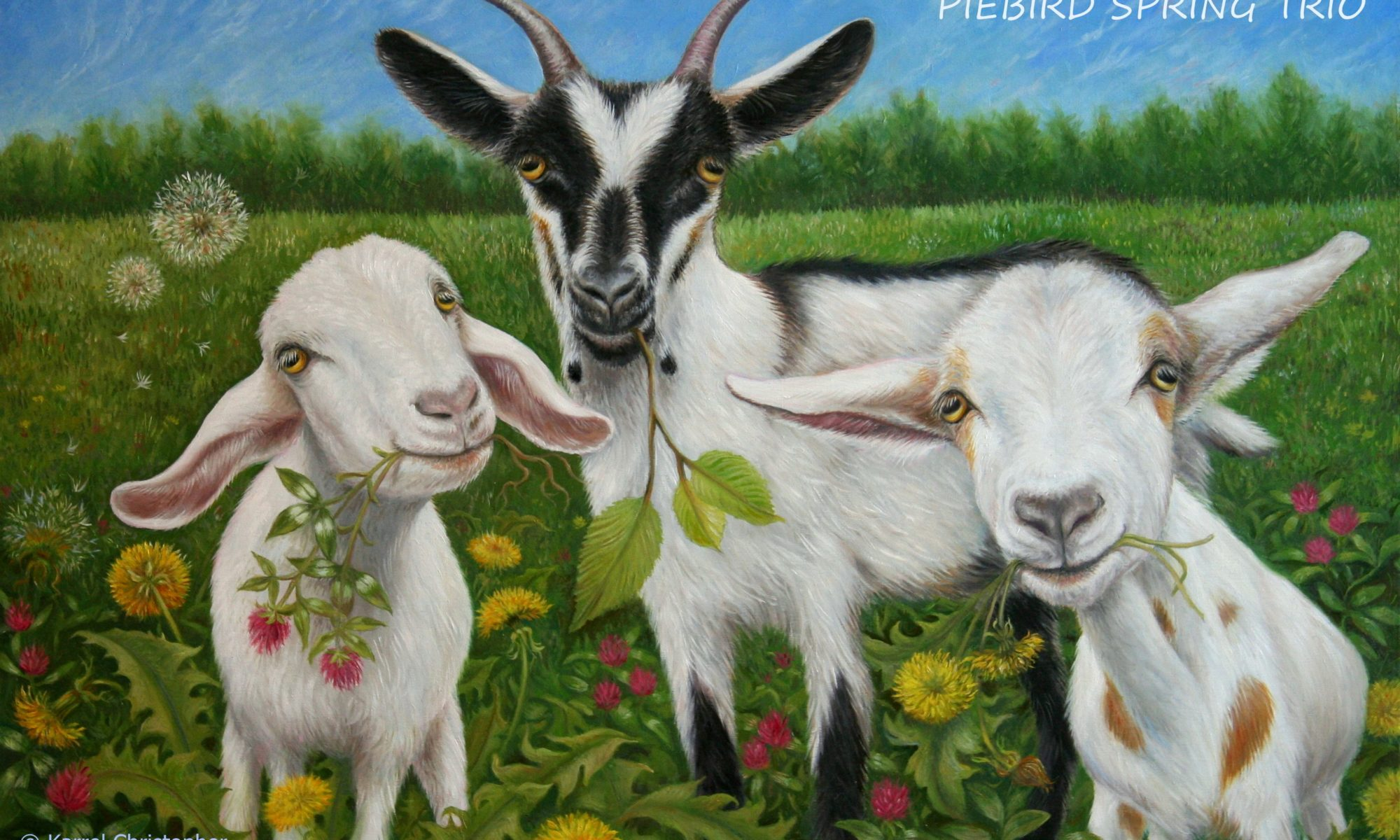 """""""Ах, эти козы!"""" рассказ. Автор Камило Хосе Села"""