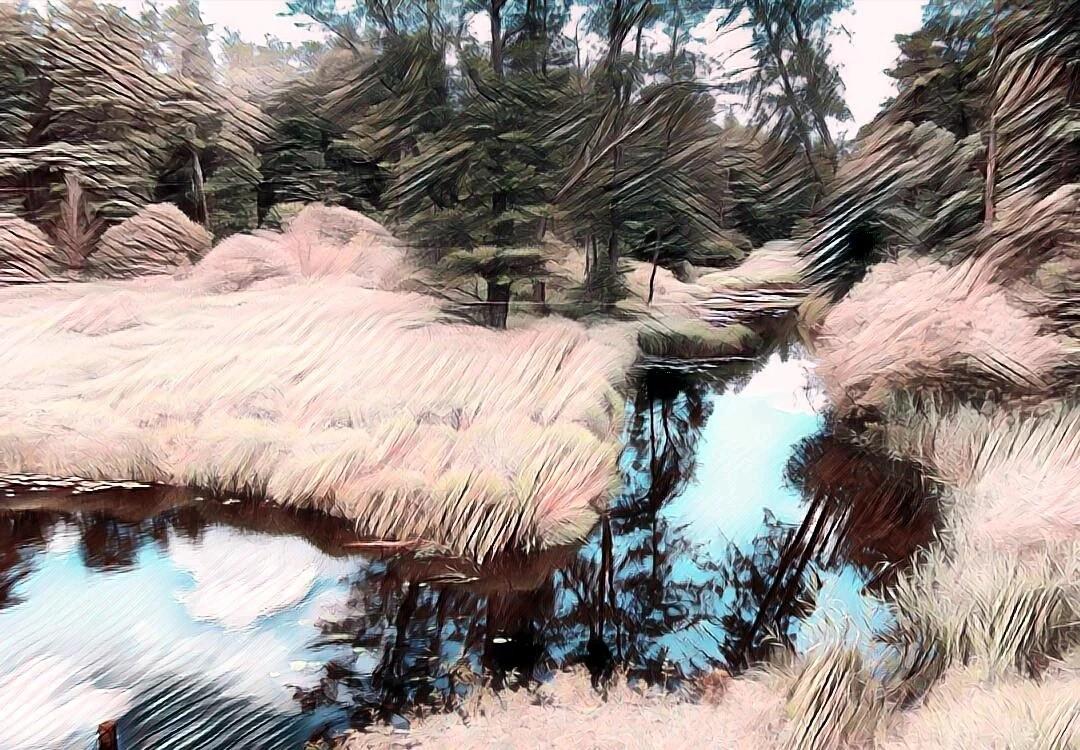 """""""В каждом лесу своя Яга"""". Реальная история. Деревенская мистика."""
