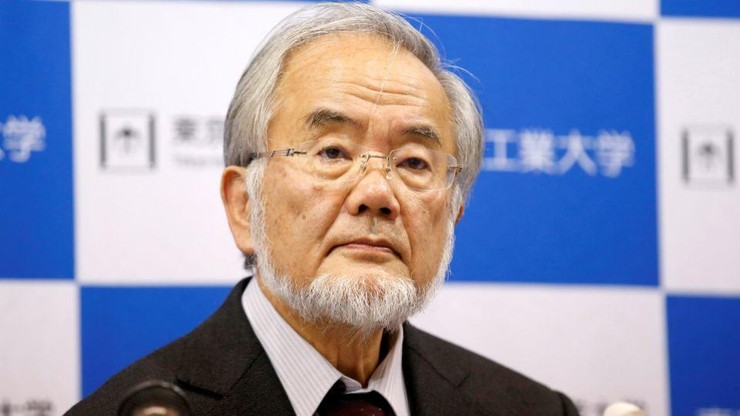 Японский инженер компании Panasonic: Я не могу больше работать на ворованных советских патентах