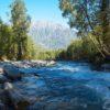 Алтай 2014. Часть 4. Катунский заповедник (изумительные фотографии и виды Природы Алтая)