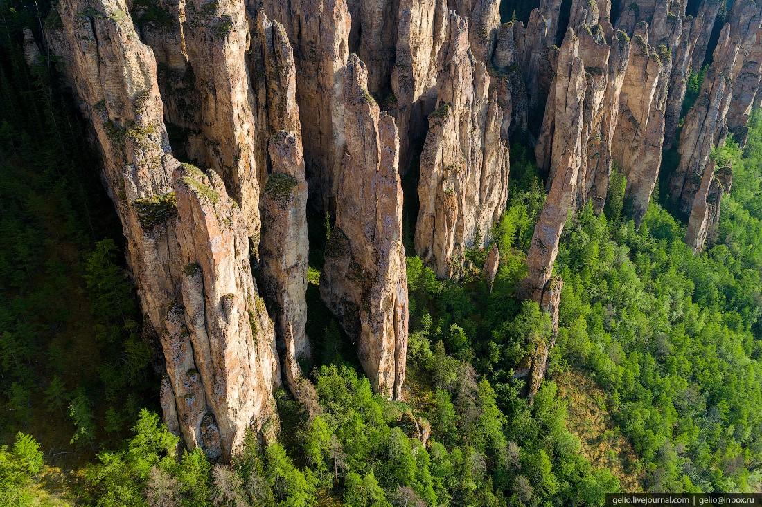 Ленские столбы — каменный лес Якутии (45 фото)