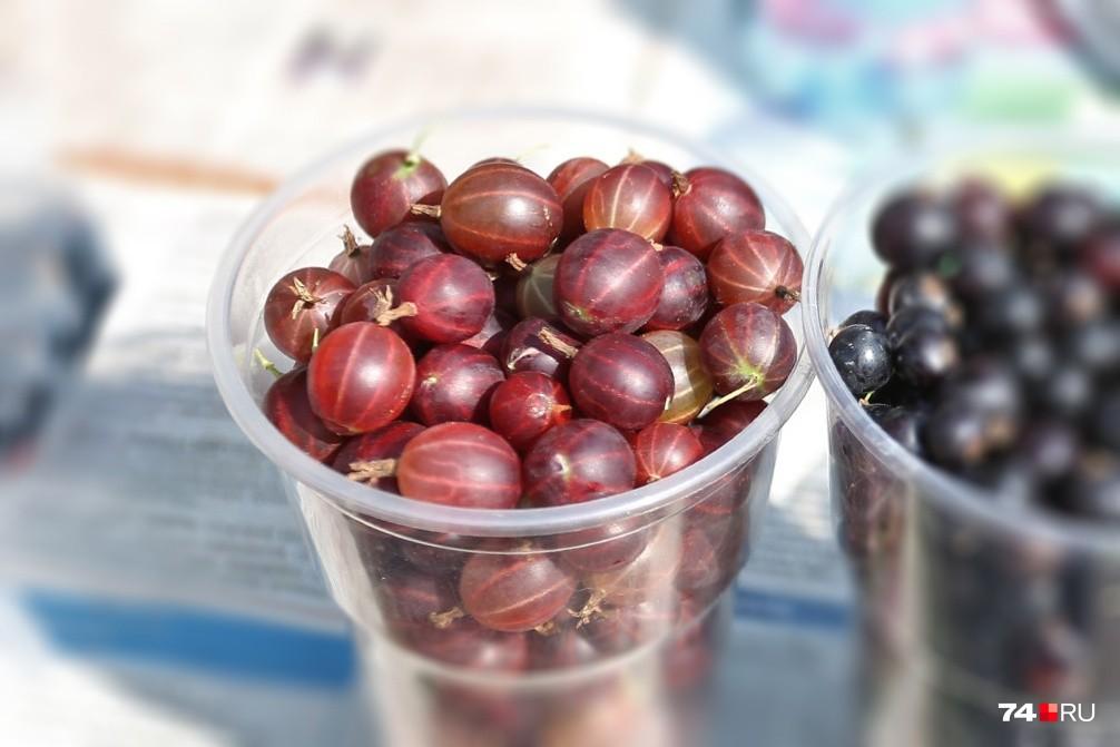 Ягоды в гигантских количествах можно пустить на вино. Из крыжовника, кстати, вино получается особенно вкусное — наши форумчане уже оценили