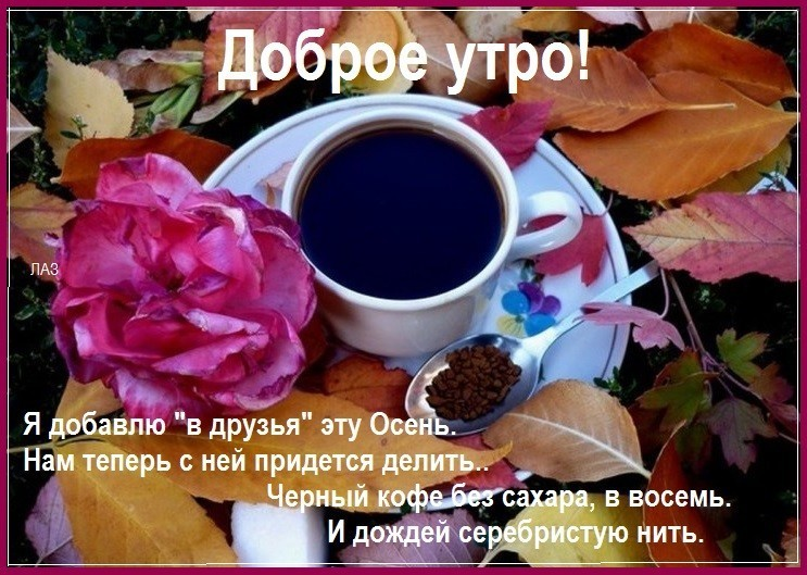 """Как """"Понедельник начинается в субботу"""" в """"Чародеев"""" превратился"""