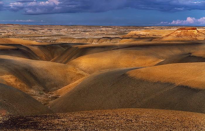 Пустыня вечером. Фото: Alex Mironyuk.