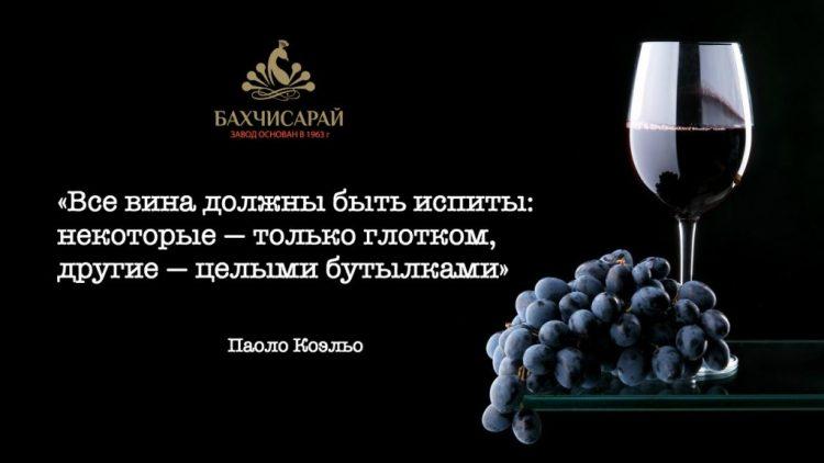 Веселые и любопытные истории из мира вина