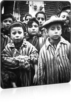 Тайна Красного Берега. Как нацисты Европы забирали кровь у советских детей (ужасные док. фото)