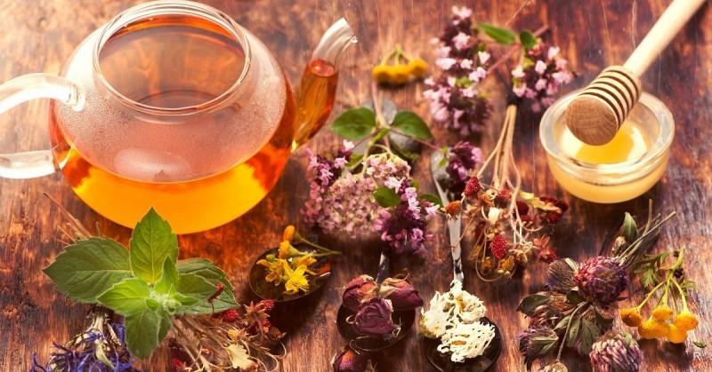 20 травяных чаев для укрепления здоровья: составы, рецепты, советы по применению