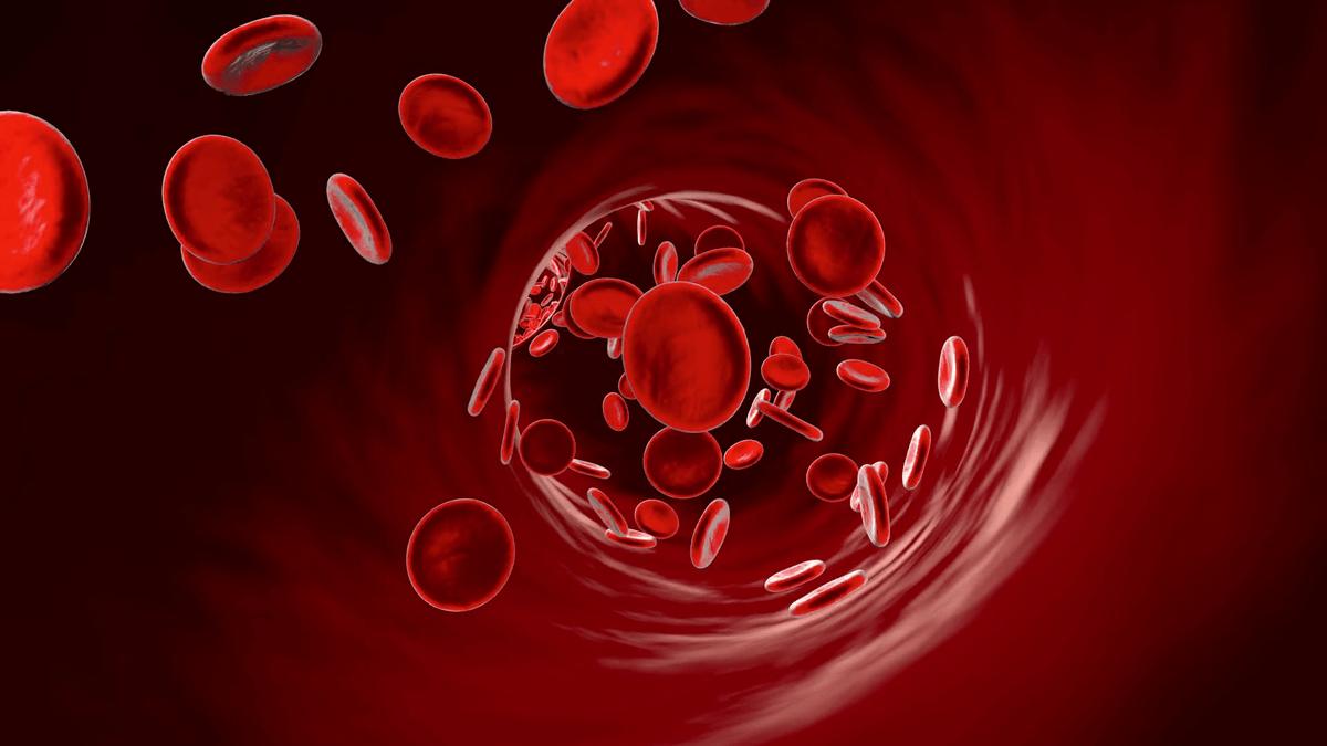 Какие продукты разжижают кровь?