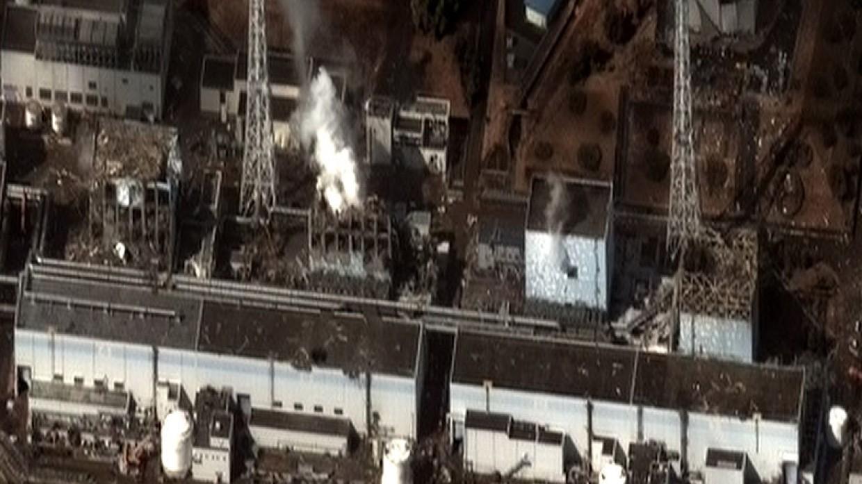 Эколог объяснил, почему Япония и Запад стараются молчать о последствиях Фукусимы