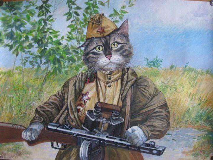 """""""История кота-зенитчика"""" добросказ из VK"""