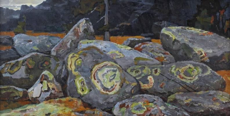 Мхи на камнях