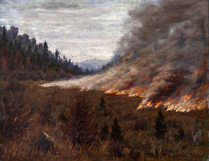 Слюсарев. Лесной пожар