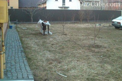 Площадка под газон из мятлика