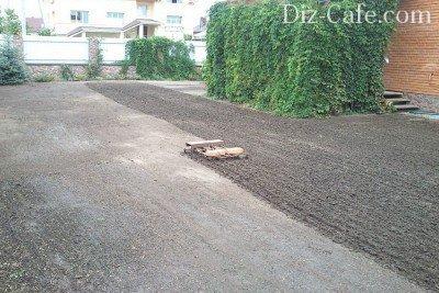 Рыхление почвы перед посевом семян мятлика