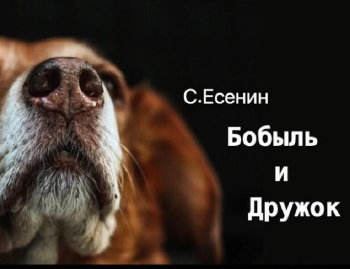«БОБЫЛЬ И ДРУЖОК» рассказ. Автор Сергей Есенин