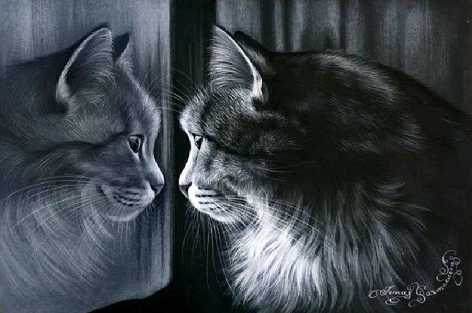 Коты, кошечки и котики художника Ирины Гармашовой (Irina Garmashova)