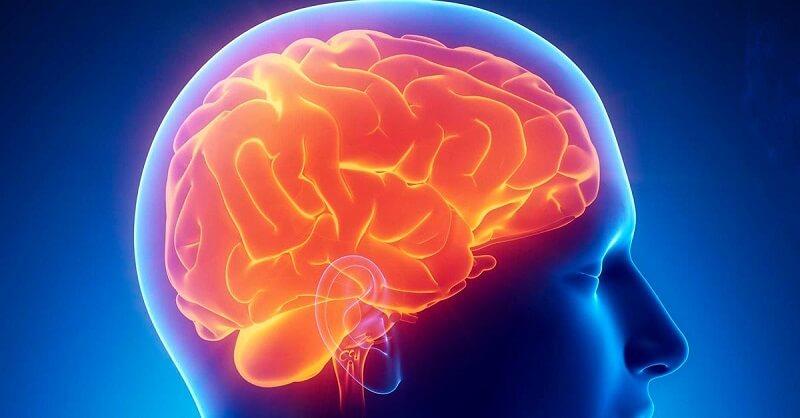 Питание (продукты и еда) для мозга